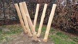 robinia hout palen kopen stelten openbaar gebruik schuin
